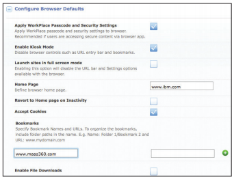 MaaS360 console browser settings